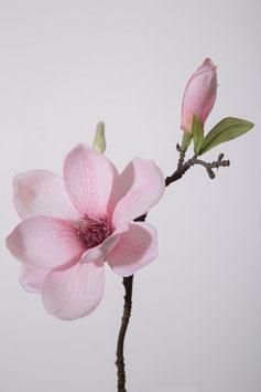 Magnolia Pick 36cm