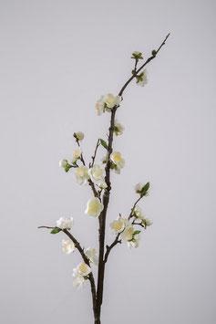 Blossom 102cm