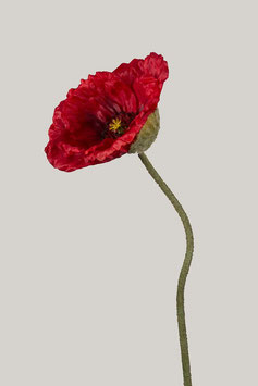Poppy Spray 77cm