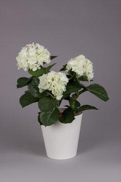 Hydrangea Bush 38cm