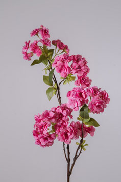 Cherry Blossom 80cm