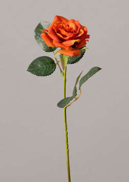 Single Rose w/2 st of lvs 29cm