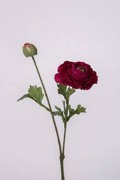 Ranunculus Spray x2 w/4 set lvs 48cm
