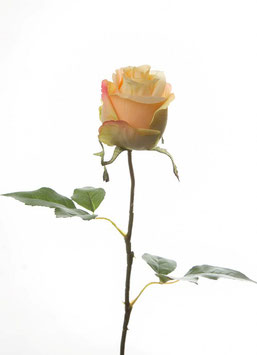 Rose Single Stem w/2 lvs 54cm