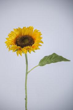 Sonnenblume 51cm