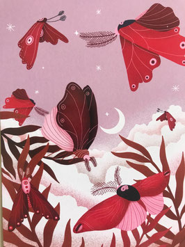 Postkarte – NIGHTGARDEN