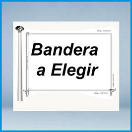 Bandera Institucional a Elegir