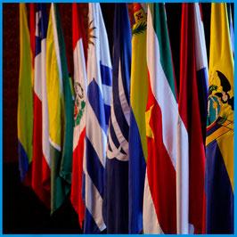 Bandera Raso Estampado Doble 150x100cm