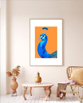 """Peacock"" - Art Print"