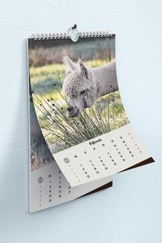 Alpaka Wandkalender 2021 - A4 Hochformat - Kalender mit Alpaka Fotos - exklusiv bei Mein-Alpaka-Shop.de