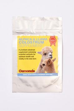 Ersatz-Kolostrum für Alpaka-Fohlen, 10 g - Einzelportion