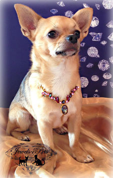 "Jewels4Pets dog necklace ""Magical"""