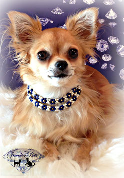 "Jewels4Pets Luxury dog necklace ""Flirty"" freshwater cultured pearls & blue lobule gems with 585 gold-pearls (14 carat)"