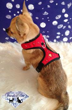 "Jewels4Pets dog harness ""Salsa"""