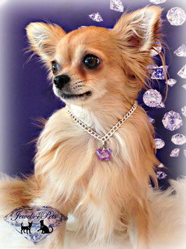 "Jewels4Pets dog necklace ""Butterfly"""