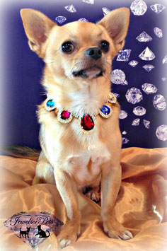 "Jewels4Pets dog necklace ""Hollywood"""