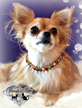 "Jewels4Pets Luxury dog necklace ""Candy"" with real high quality zirconia crystals"