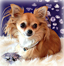 "Jewels4Pets dog necklace ""Couture"""