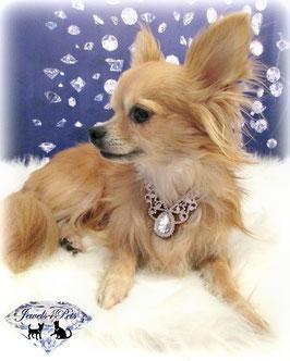 "Jewels4Pets dog necklace ""Goddess"""