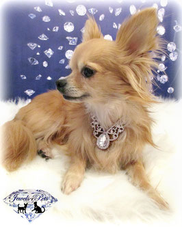 "Jewels4Pets Hundecollier ""Goddess"""