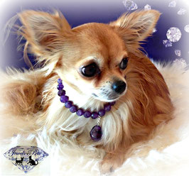 "Jewels4Pets Luxury dog necklace ""Violet"" made of finest amethyst gemstones"