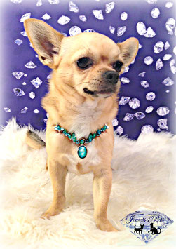"Jewels4Pets dog necklace ""Mystery"""