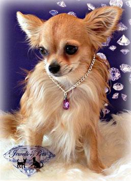 "Jewels4Pets dog necklace ""Teardrop"""