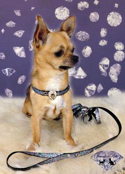 "Jewels4Pets luxury dog collar & leash ""Hollywood"""