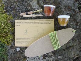 Kit musique préhistorique