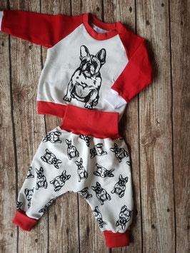 Pumphose und Raglan-Sweater Französische Bulldogge Rot