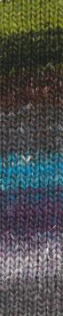 Silk Garden Sock Fb 272