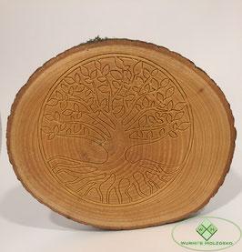 """Baumscheibe """"Lebensbaum"""""""