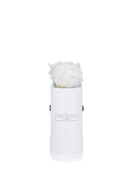 BLANC PUR, mini rond blanc