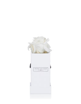 BLANC PUR, mini carré blanc