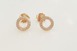CIRCLE Zirkon Studs Earrings