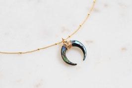 Horn Halskette Paua
