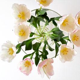 Tulpen im Glas - Postkarte ohne Couvert
