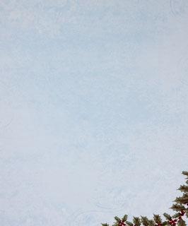 Papier bleu clair orné de houx - SPECIAL NOËL