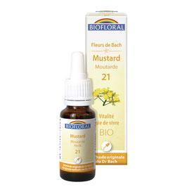 Mustard n°20 - Moutarde