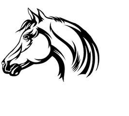 Läsergravur Pferd-2
