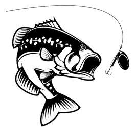 Läsergravur Fisch-Egli-1
