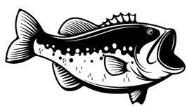 Läsergravur Fisch-Egli-3