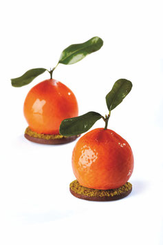 TuttiFrutti Pavoni Mould PX4332s - Tangerine