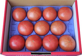 【送料込み】大柳農園 ことぶきトマト小箱