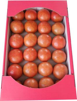 【送料込み】大柳農園 ことぶきトマトM24球入