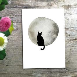 Katze/Kater