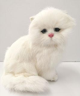 Katze sitzend gross