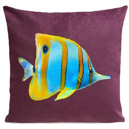 BUTTERFLY FISH - PLUM