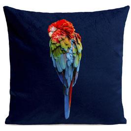RED PARROT - DEEP BLUE