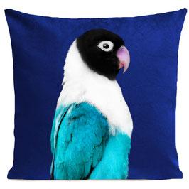 MISS BIRDY - KLEIN BLUE